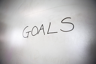 Defining Business Goals and Processes