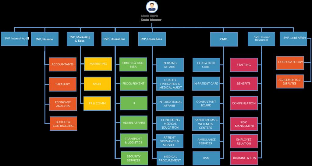 Basic Hospital Organizational Chart | Representation for a Cloud Transition