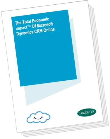 TEI of Microsoft Dynamics Whitepaper | Cloudbakers